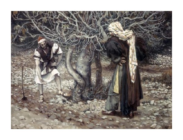 The Vinedresser and the Fig Tree by James Tissot